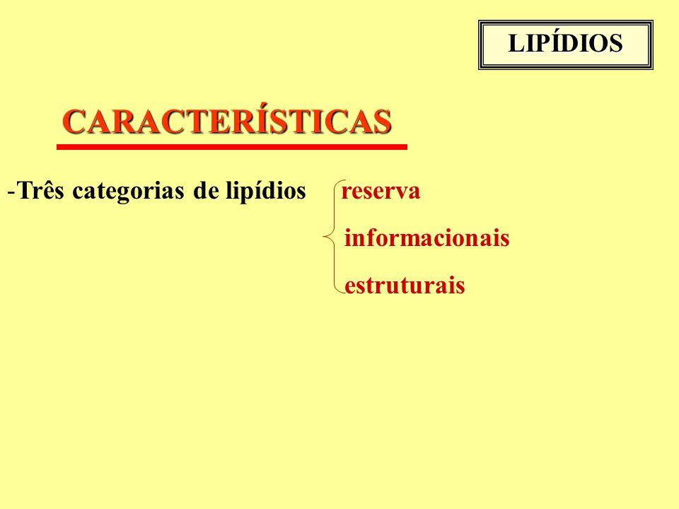 LIPÍDIOS CARACTERÍSTICAS -Três categorias de lipídios reserva informacionais estruturais