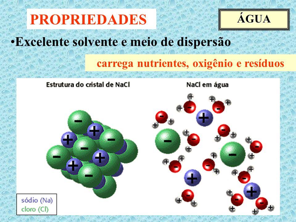 ÁGUA PROPRIEDADES Excelente solvente e meio de dispersão carrega nutrientes, oxigênio e resíduos