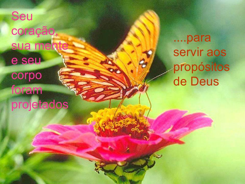 Seu coração, sua mente e seu corpo foram projetados....para servir aos propósitos de Deus