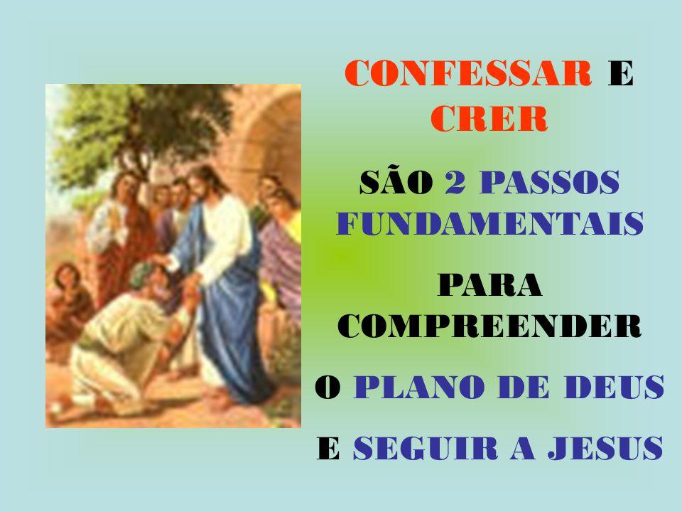 CONFESSAR E CRER SÃO 2 PASSOS FUNDAMENTAIS PARA COMPREENDER O PLANO DE DEUS E SEGUIR A JESUS