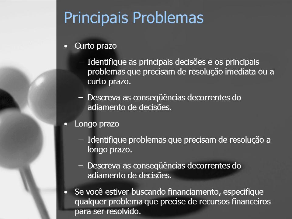 Principais Problemas Curto prazo –Identifique as principais decisões e os principais problemas que precisam de resolução imediata ou a curto prazo.