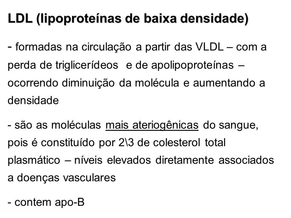 LDL (lipoproteínas de baixa densidade) - formadas na circulação a partir das VLDL – com a perda de triglicerídeos e de apolipoproteínas – ocorrendo di