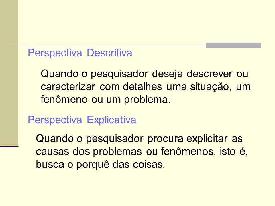 Quando o pesquisador deseja descrever ou caracterizar com detalhes uma situação, um fenômeno ou um problema. Perspectiva Descritiva Perspectiva Explic