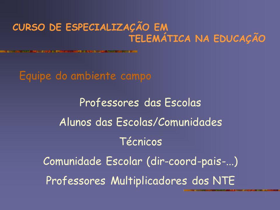 Equipe do ambiente campo Professores das Escolas Alunos das Escolas/Comunidades Técnicos Comunidade Escolar (dir-coord-pais-...) Professores Multiplicadores dos NTE CURSO DE ESPECIALIZAÇÃO EM TELEMÁTICA NA EDUCAÇÃO