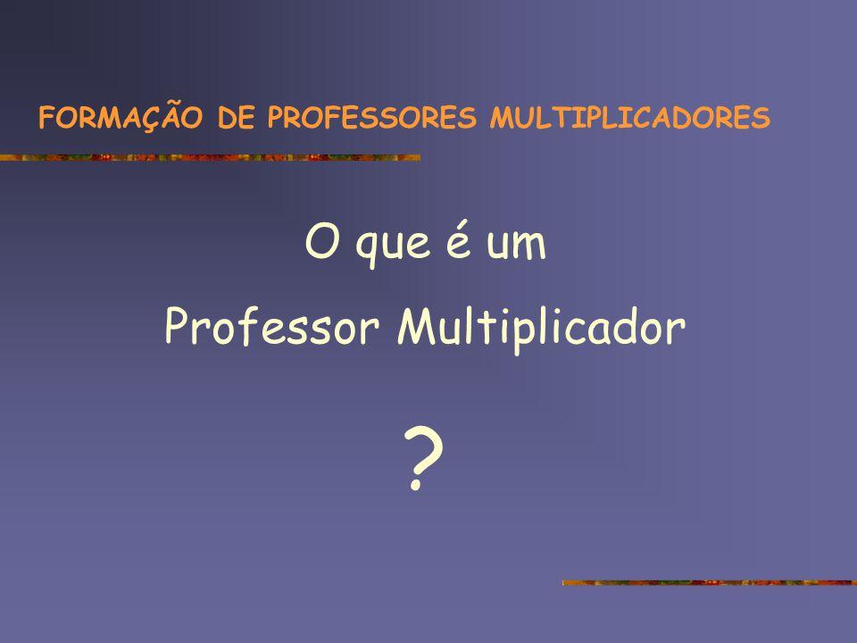FORMAÇÃO DE PROFESSORES MULTIPLICADORES recursos materiais infra-estrutura recursos humanos formação L A B N T E PROF – GEST -...