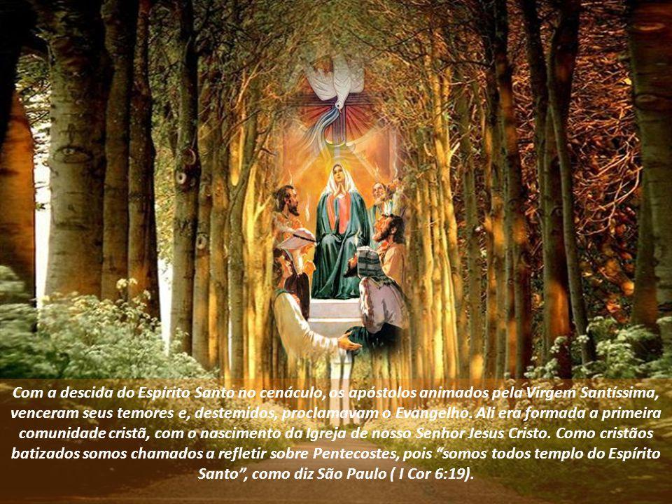 Com a descida do Espírito Santo no cenáculo, os apóstolos animados pela Virgem Santíssima, venceram seus temores e, destemidos, proclamavam o Evangelho.