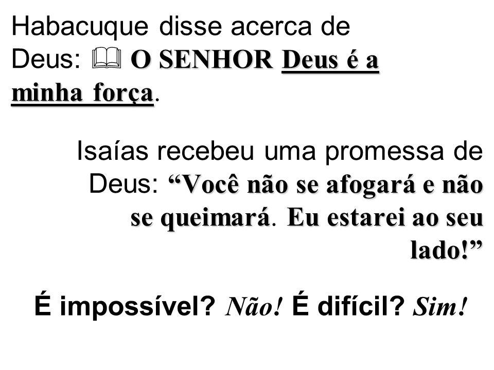 """O SENHORDeus é a minha força Habacuque disse acerca de Deus:  O SENHOR Deus é a minha força. """"Vocênão se afogaráenão se queimaráEu estarei ao seu lad"""