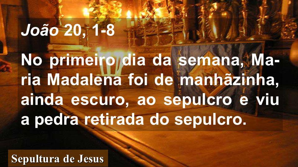 João 20, 1-8 No primeiro dia da semana, Ma- ria Madalena foi de manhãzinha, ainda escuro, ao sepulcro e viu a pedra retirada do sepulcro.