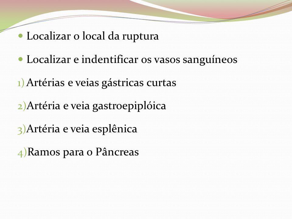 Localizar o local da ruptura Localizar e indentificar os vasos sanguíneos 1) Artérias e veias gástricas curtas 2) Artéria e veia gastroepiplóica 3) Ar