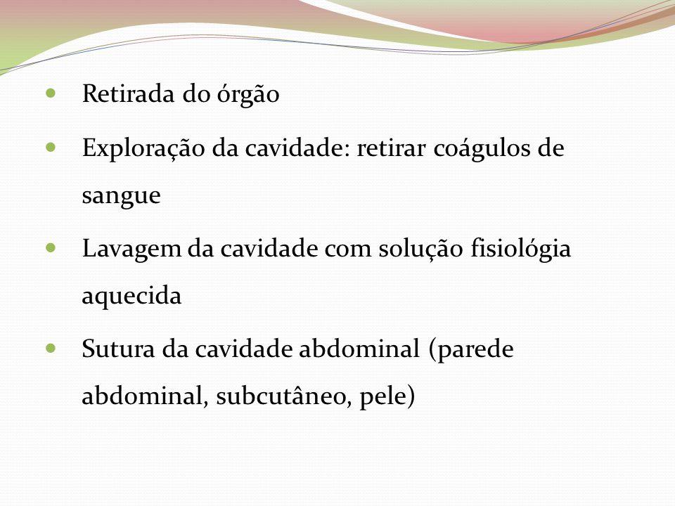 Retirada do órgão Exploração da cavidade: retirar coágulos de sangue Lavagem da cavidade com solução fisiológia aquecida Sutura da cavidade abdominal