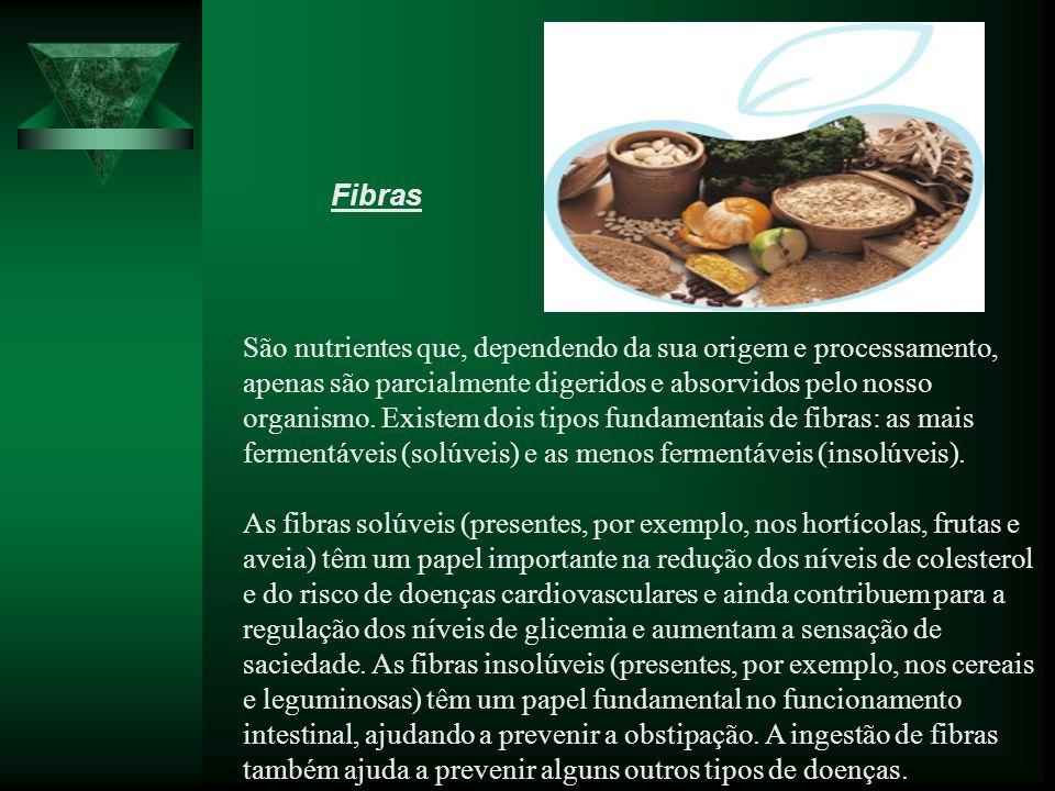 São nutrientes que, dependendo da sua origem e processamento, apenas são parcialmente digeridos e absorvidos pelo nosso organismo.