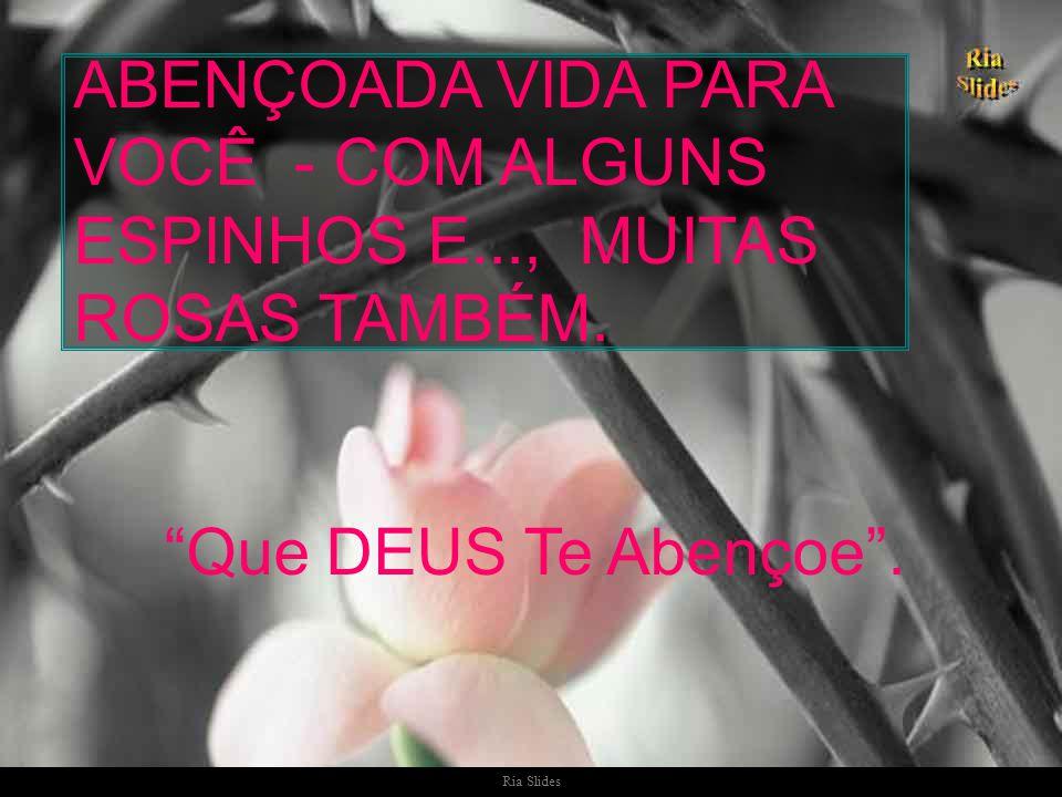 Ria Slides Muita Paz, muita Luz!!!.