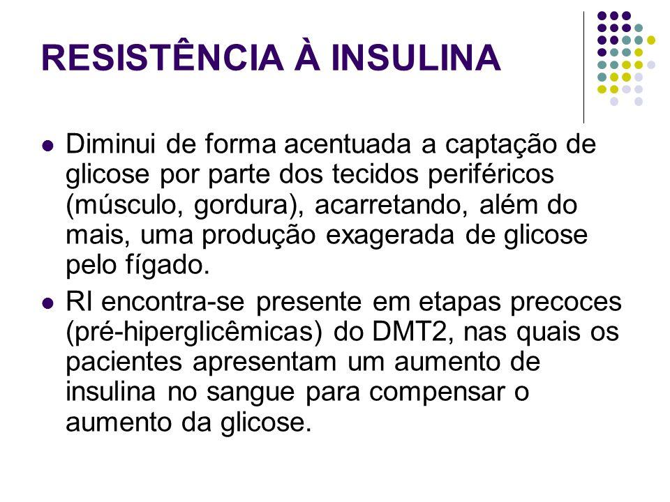 RESISTÊNCIA À INSULINA Diminui de forma acentuada a captação de glicose por parte dos tecidos periféricos (músculo, gordura), acarretando, além do mais, uma produção exagerada de glicose pelo fígado.