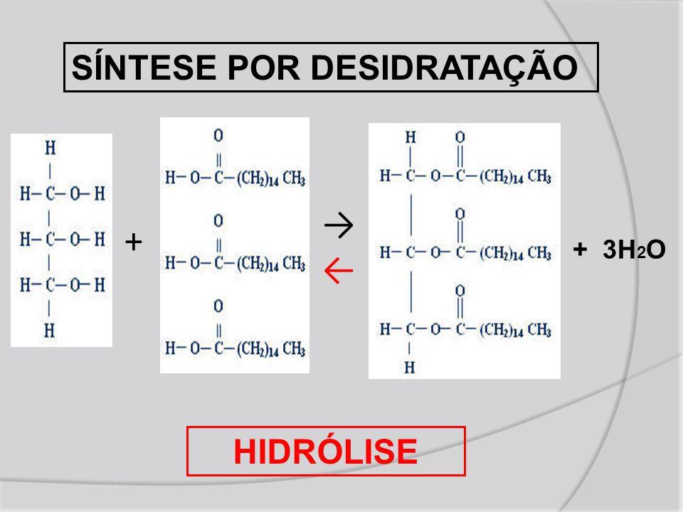 + →←→← + 3H 2 O SÍNTESE POR DESIDRATAÇÃO HIDRÓLISE