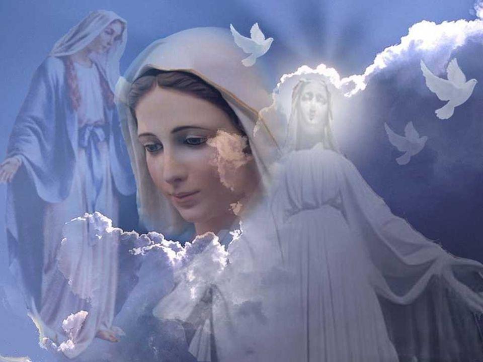 A Igreja quer nos lembrar desde o primeiro dia do ano, que a paz anunciada pelos anjos em Belém é possível e devemos nos esforçar dia a dia para construí-la.