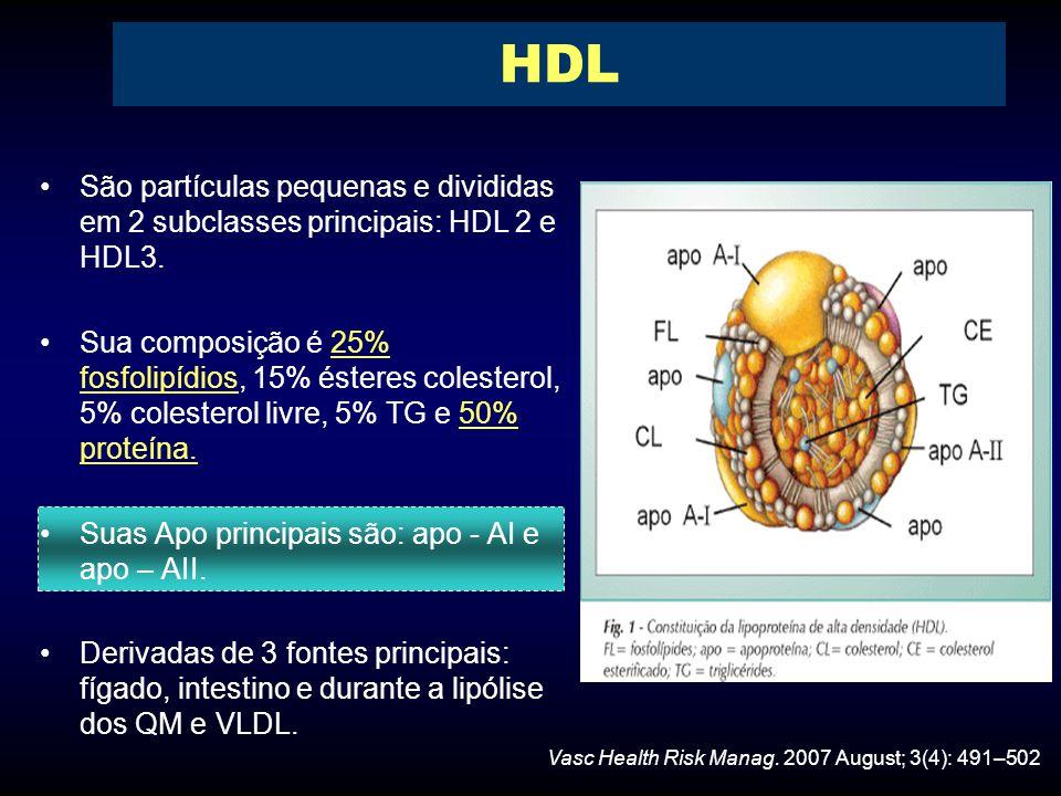São partículas pequenas e divididas em 2 subclasses principais: HDL 2 e HDL3.