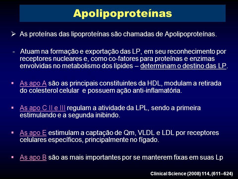  As proteínas das lipoproteínas são chamadas de Apolipoproteínas.
