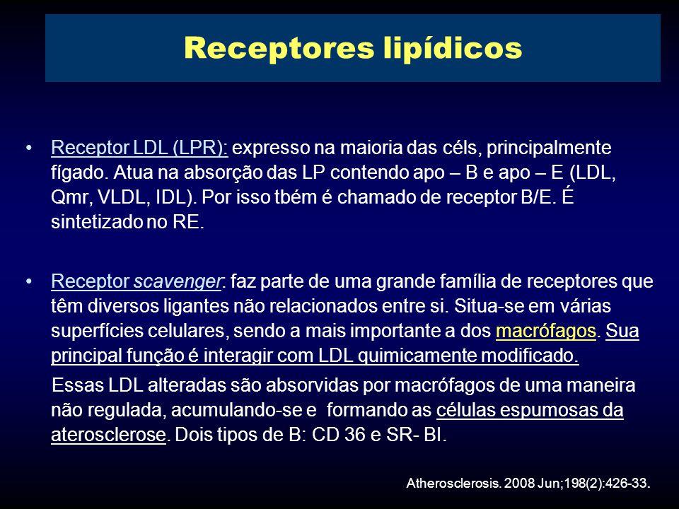 Receptor LDL (LPR): expresso na maioria das céls, principalmente fígado.