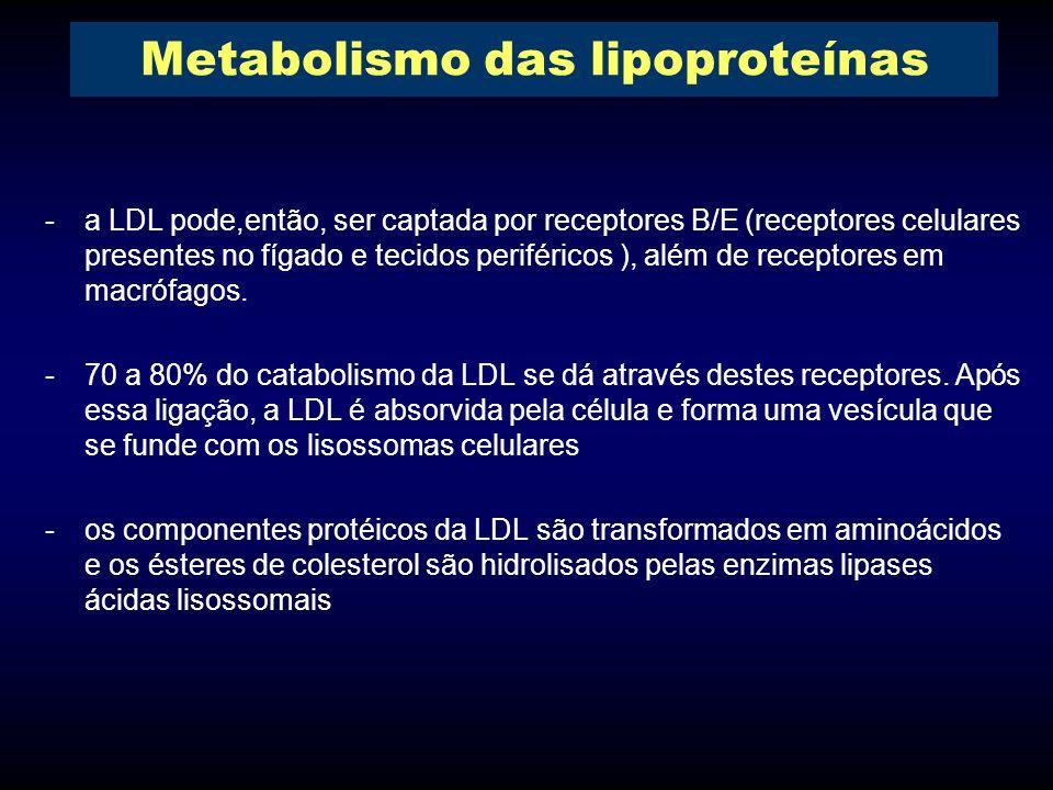 -a LDL pode,então, ser captada por receptores B/E (receptores celulares presentes no fígado e tecidos periféricos ), além de receptores em macrófagos.