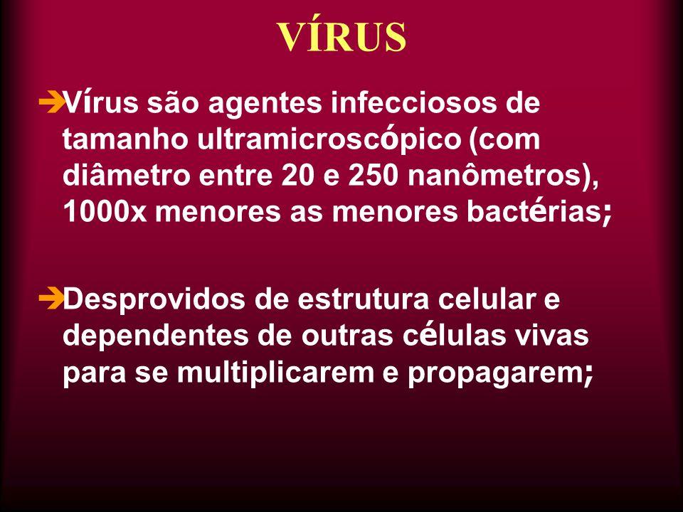  V í rus são agentes infecciosos de tamanho ultramicrosc ó pico (com diâmetro entre 20 e 250 nanômetros), 1000x menores as menores bact é rias ;  Desprovidos de estrutura celular e dependentes de outras c é lulas vivas para se multiplicarem e propagarem ; VÍRUS