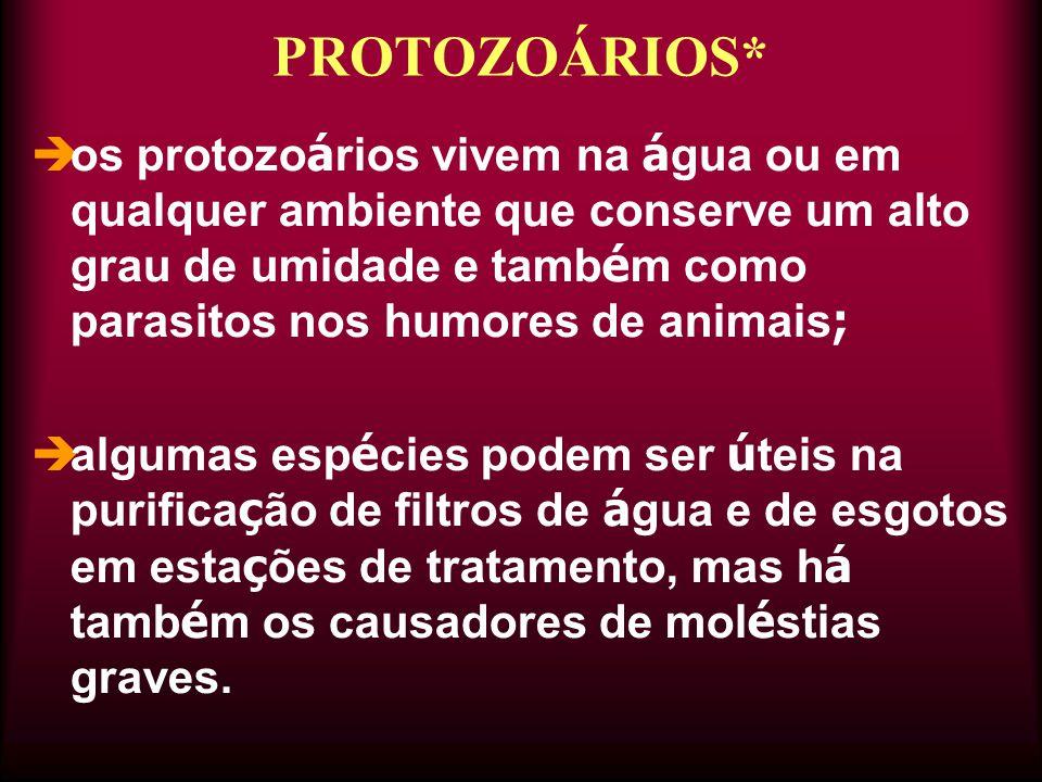  os protozo á rios vivem na á gua ou em qualquer ambiente que conserve um alto grau de umidade e tamb é m como parasitos nos humores de animais ;  a