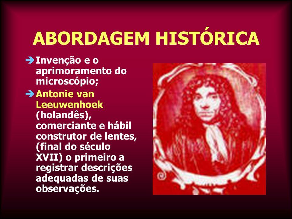 ABORDAGEM HISTÓRICA  Invenção e o aprimoramento do microscópio;  Antonie van Leeuwenhoek (holandês), comerciante e hábil construtor de lentes, (final do século XVII) o primeiro a registrar descrições adequadas de suas observações.
