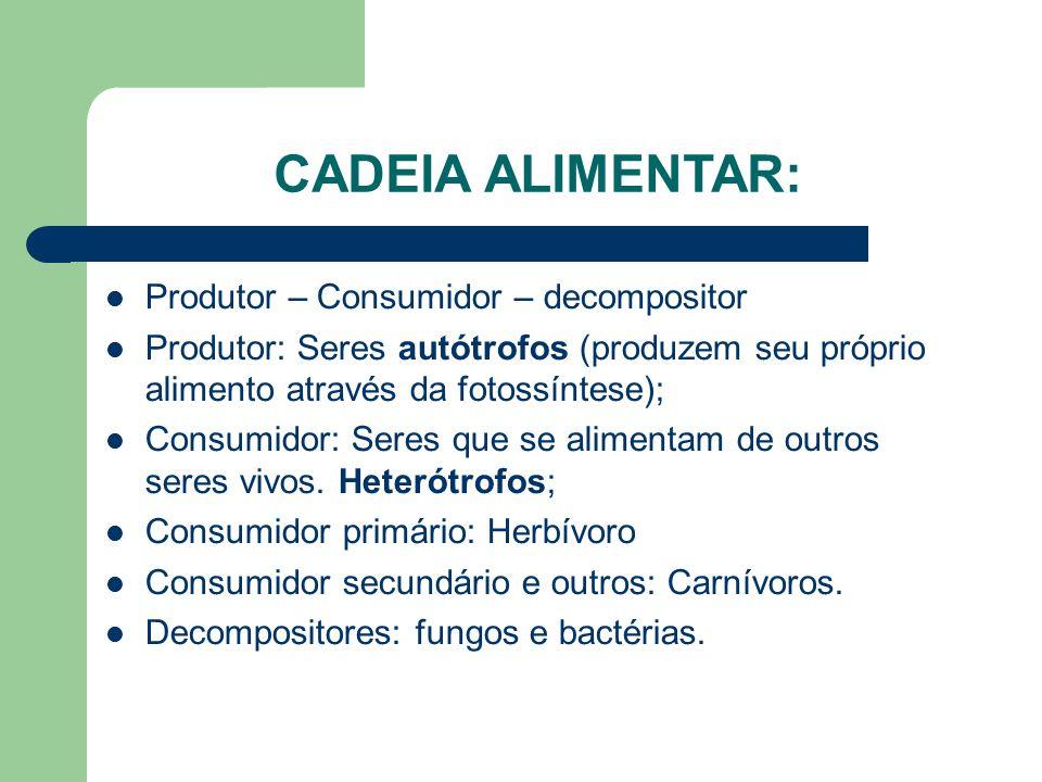 CADEIA ALIMENTAR: Produtor – Consumidor – decompositor Produtor: Seres autótrofos (produzem seu próprio alimento através da fotossíntese); Consumidor: Seres que se alimentam de outros seres vivos.