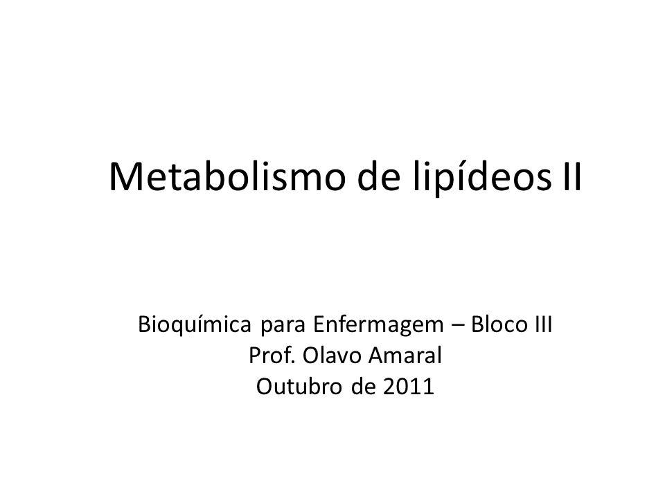 Metabolismo de lipídeos II Bioquímica para Enfermagem – Bloco III Prof.