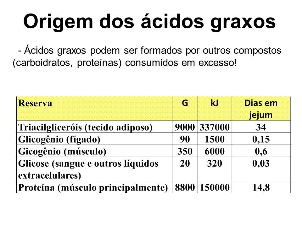 Origem dos ácidos graxos Reserva GkJDias em jejum Triacilgliceróis (tecido adiposo)900033700034 Glicogênio (fígado)9015000,15 Gicogênio (músculo)35060000,6 Glicose (sangue e outros líquidos extracelulares) 203200,03 Proteína (músculo principalmente)880015000014,8 - Ácidos graxos podem ser formados por outros compostos (carboidratos, proteínas) consumidos em excesso!