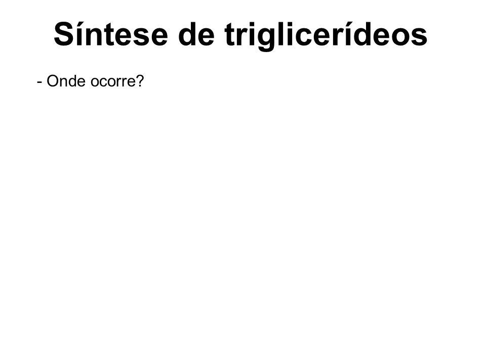 Síntese de triglicerídeos - Onde ocorre?
