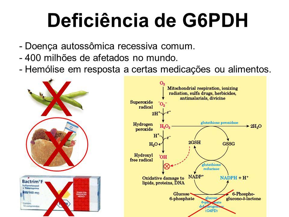 Ramo oxidativo da via das pentoses Deficiência de G6PDH - Doença autossômica recessiva comum.