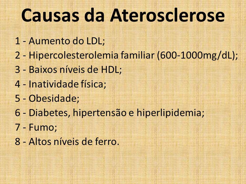 Causas da Aterosclerose 1 - Aumento do LDL; 2 - Hipercolesterolemia familiar (600-1000mg/dL); 3 - Baixos níveis de HDL; 4 - Inatividade física; 5 - Ob