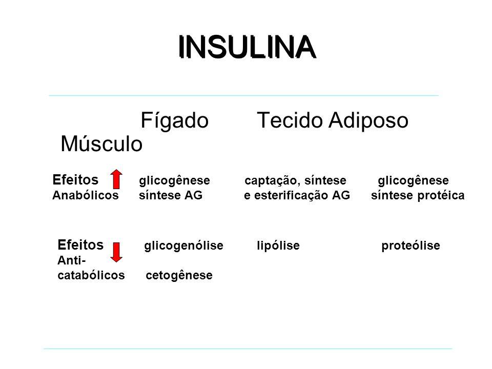 DIABETES MELLITUS DEFINIÇÃO Grupo de doenças metabólicas caracterizadas por hiperglicemia, devido a defeito na secreção de insulina, na sua ação, ou ambos.