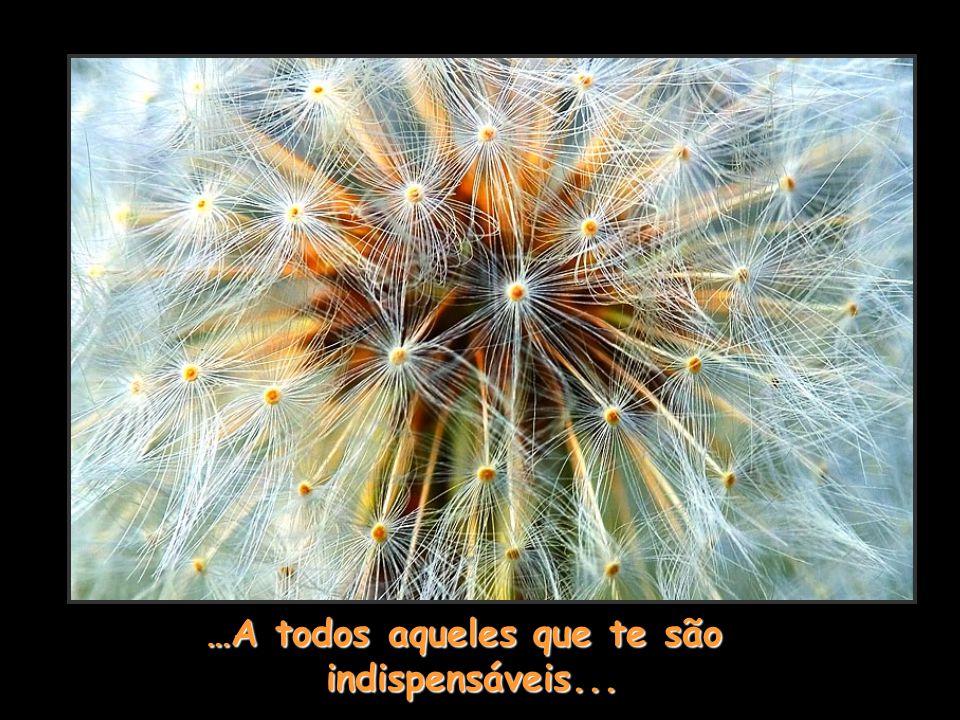 …A todos aqueles que te são indispensáveis... indispensáveis...