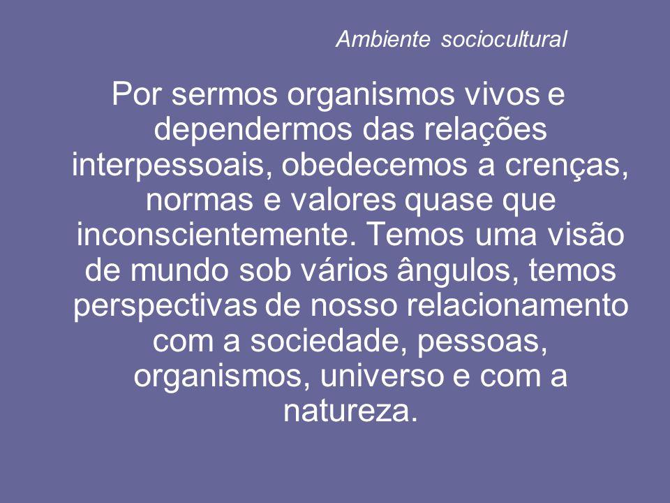 Ambiente sociocultural Por sermos organismos vivos e dependermos das relações interpessoais, obedecemos a crenças, normas e valores quase que inconscientemente.