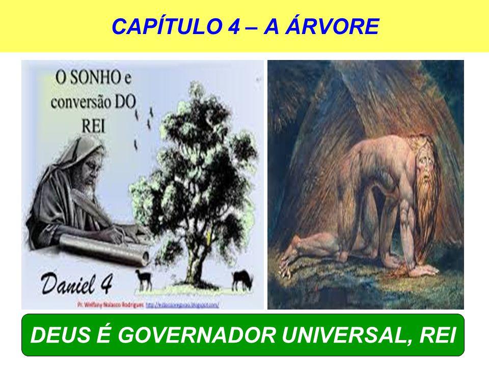 CAPÍTULO 4 – A ÁRVORE DEUS É GOVERNADOR UNIVERSAL, REI