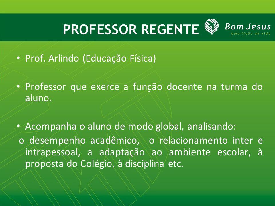 PROFESSOR REGENTE Prof. Arlindo (Educação Física) Professor que exerce a função docente na turma do aluno. Acompanha o aluno de modo global, analisand