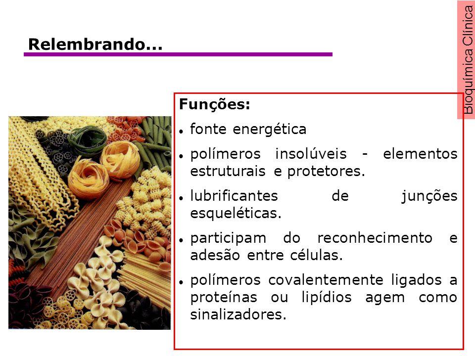 Bioquímica Clínica Funções: fonte energética polímeros insolúveis - elementos estruturais e protetores. lubrificantes de junções esqueléticas. partici