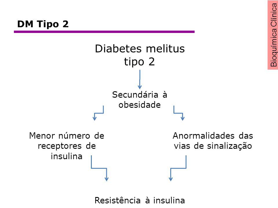 Bioquímica Clínica Diabetes melitus tipo 2 Secundária à obesidade Menor número de receptores de insulina Anormalidades das vias de sinalização Resistê