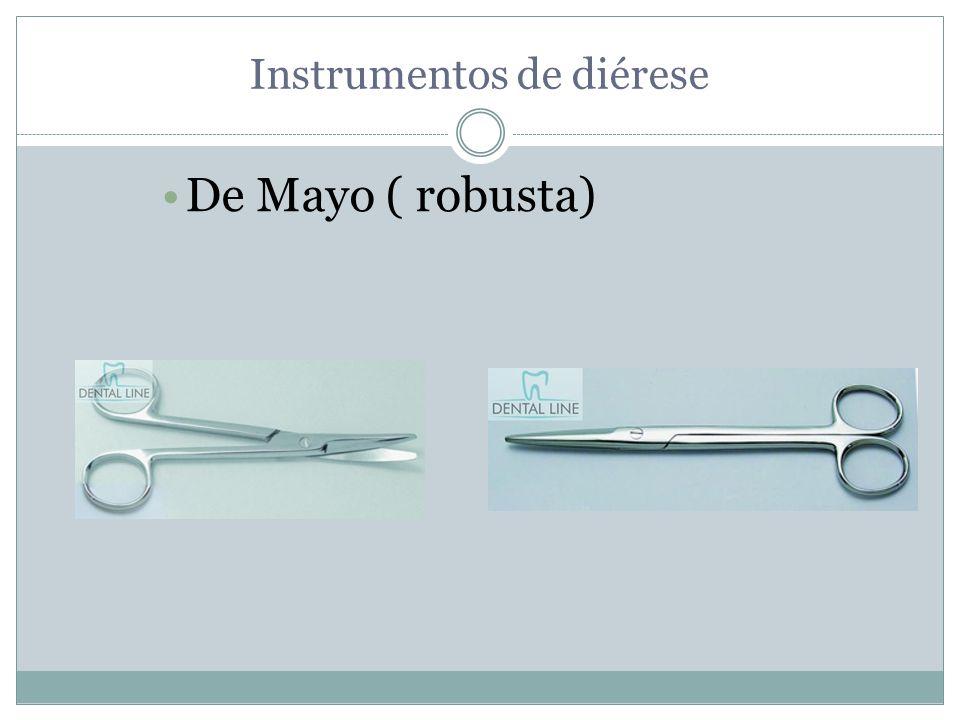 Instrumentos de diérese De Mayo ( robusta)