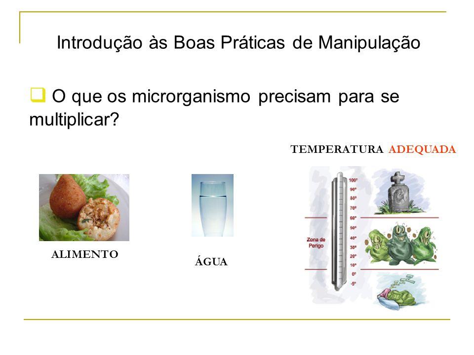 Introdução às Boas Práticas de Manipulação  O que os microrganismo precisam para se multiplicar.
