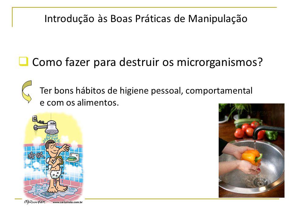 Introdução às Boas Práticas de Manipulação  Como fazer para destruir os microrganismos.