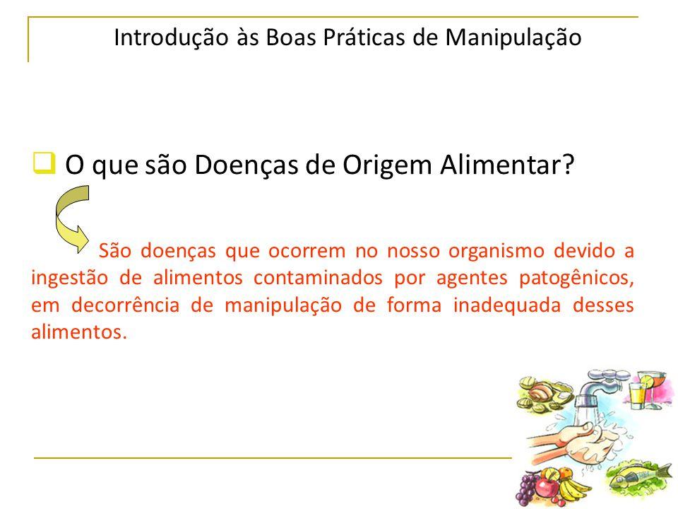 Introdução às Boas Práticas de Manipulação  O que são Doenças de Origem Alimentar.