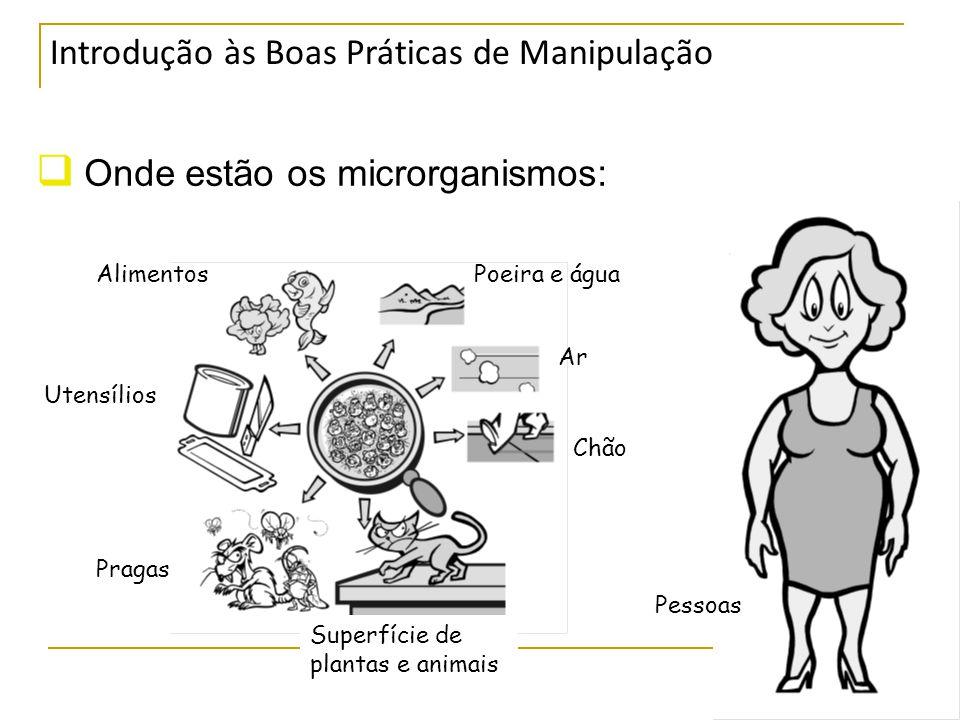 Introdução às Boas Práticas de Manipulação  Onde estão os microrganismos: AlimentosPoeira e água Ar Chão Superfície de plantas e animais Pragas Utensílios Pessoas
