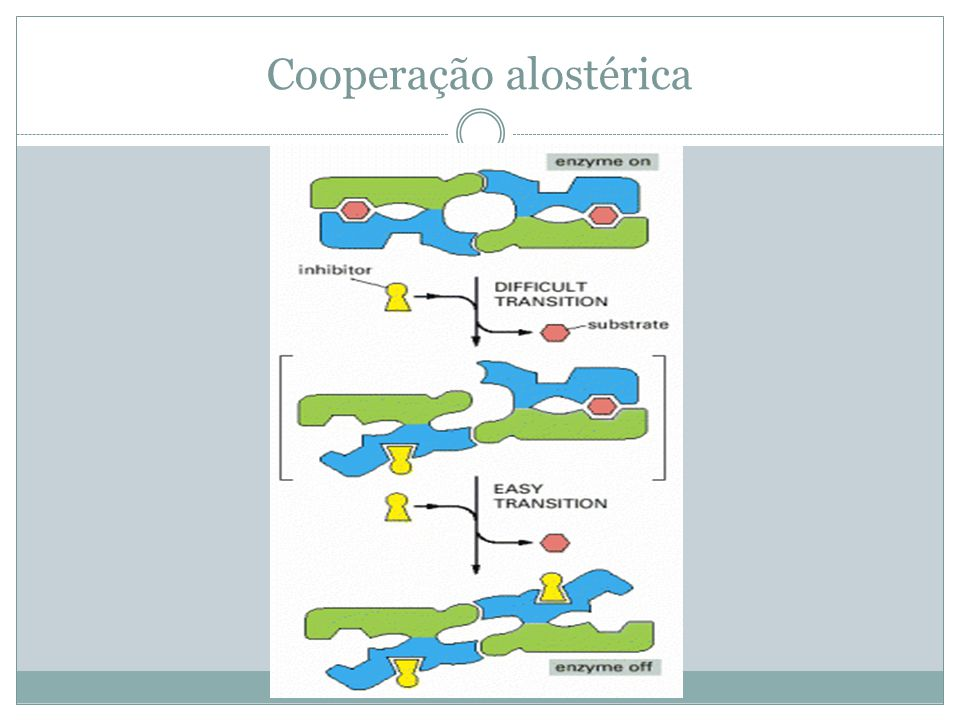 Cooperação alostérica