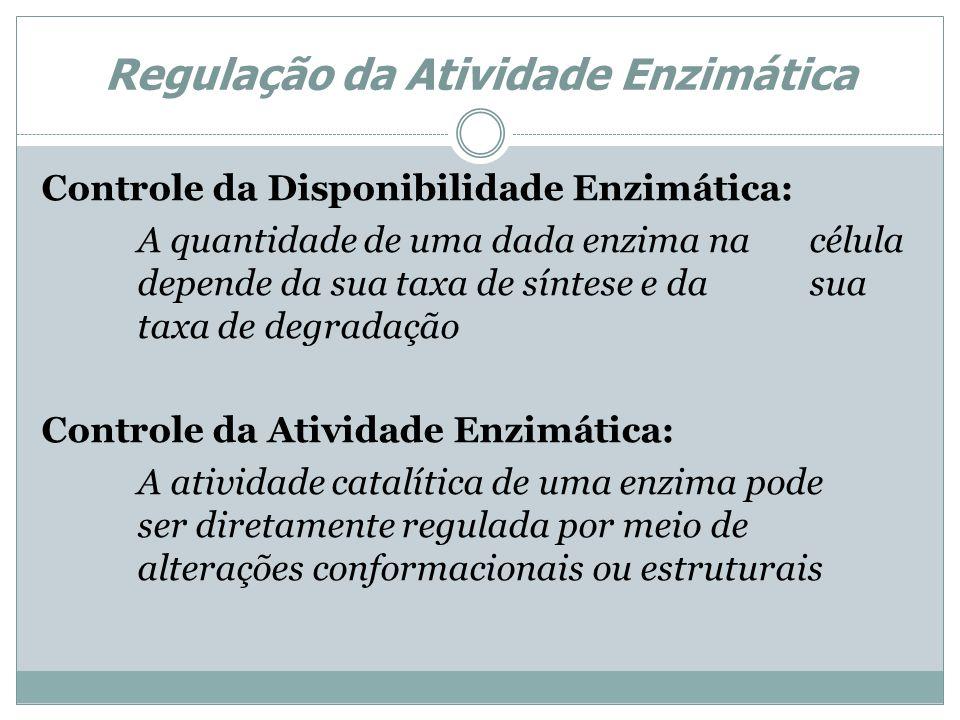 Regulação da Atividade Enzimática Controle da Disponibilidade Enzimática: A quantidade de uma dada enzima na célula depende da sua taxa de síntese e d