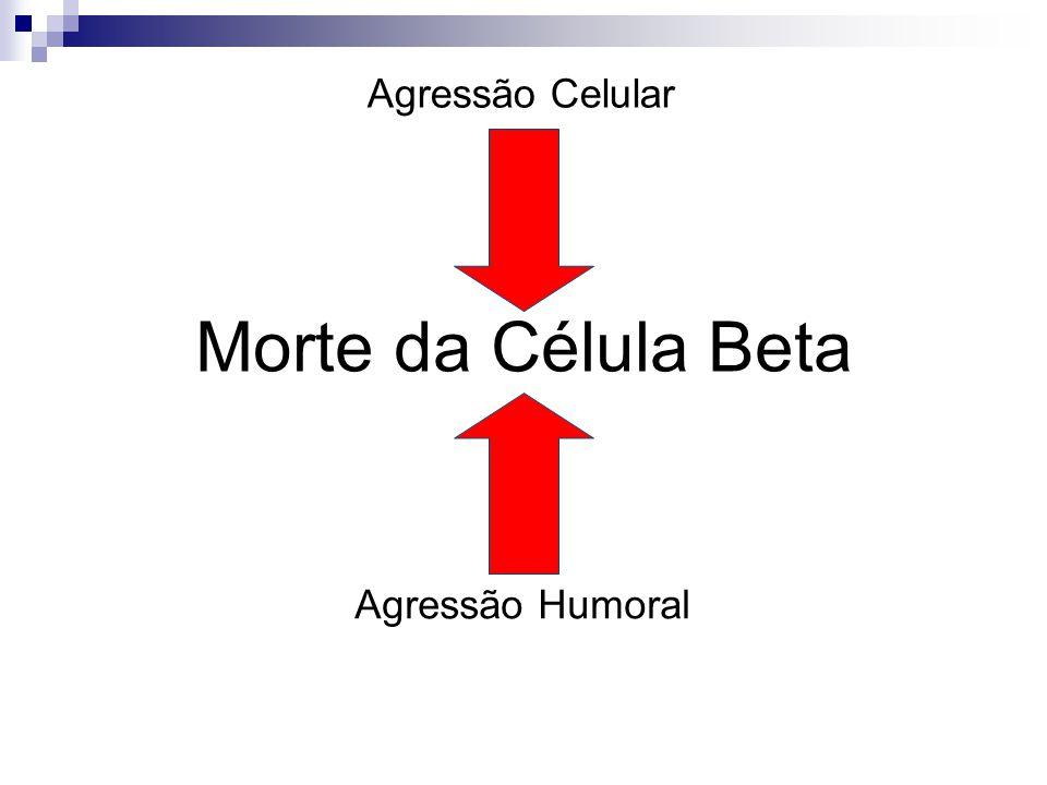 Morte da Célula Beta Agressão Celular Agressão Humoral