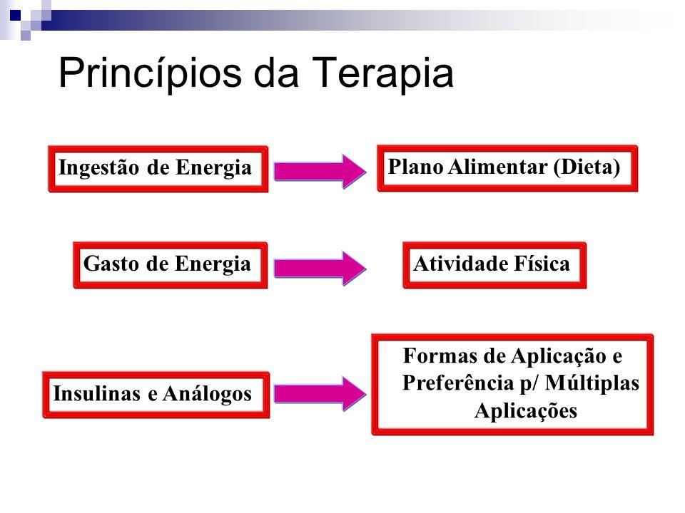Princípios da Terapia Ingestão de Energia Gasto de Energia Insulinas e Análogos Plano Alimentar (Dieta) Atividade Física Formas de Aplicação e Preferê