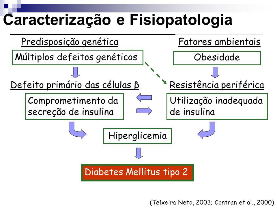 (Teixeira Neto, 2003; Contran et al., 2000) Múltiplos defeitos genéticos Hiperglicemia Obesidade Diabetes Mellitus tipo 2 Predisposição genética Carac