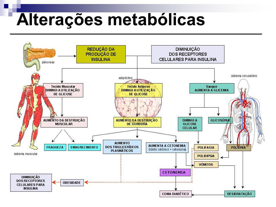 Alterações metabólicas CETONEMIA